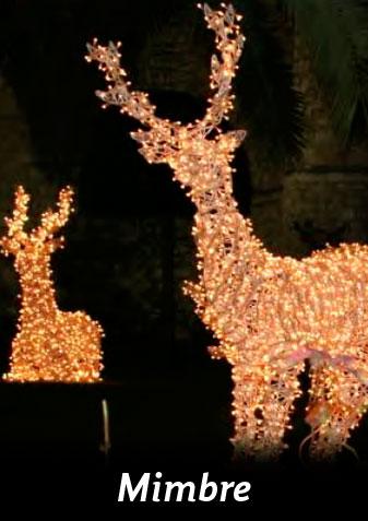 iluminacin exterior para navidad